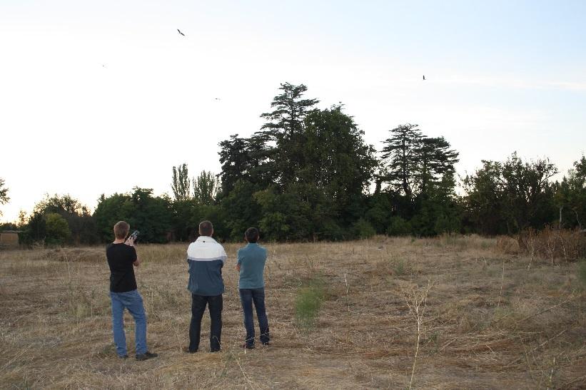 El equipo Volterra en Palencia prueba la tecnología Agrilaser ahuyentando cigüeñas